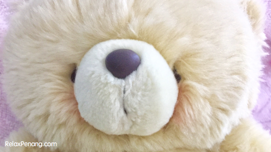 The Existence of Teddy Bear in Human Life: Global Statistic, Background & My Bear