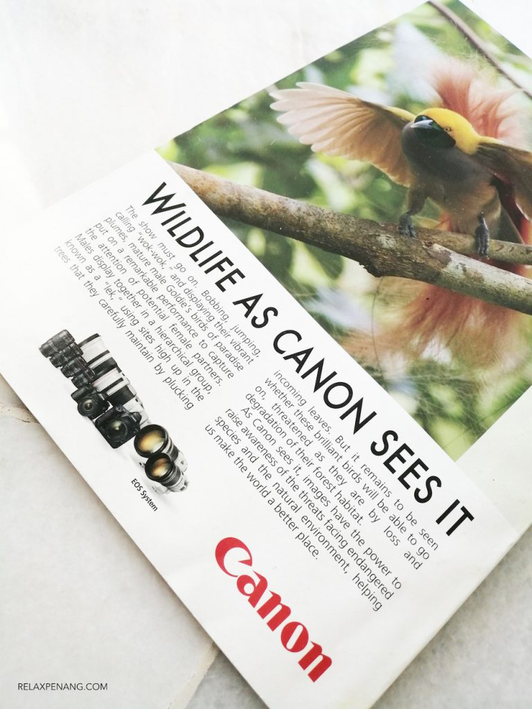 Canon Camera Ad on National Geographic Magazine Traditional Advertising