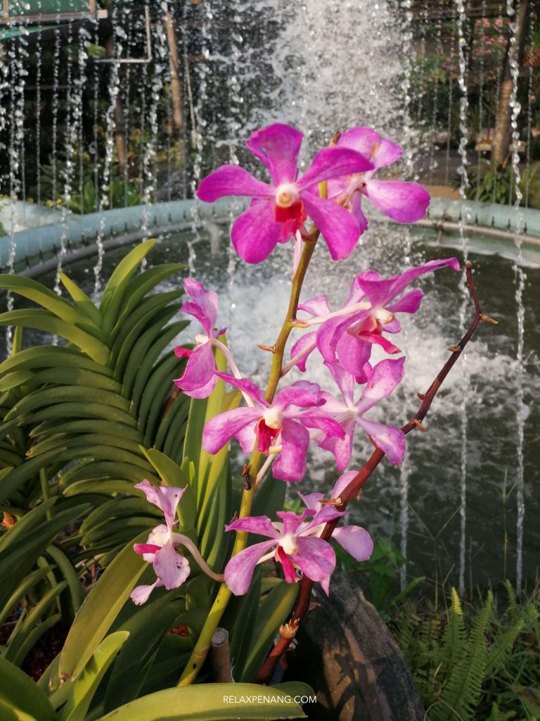KL Orchid Garden Fountain Jogging Track